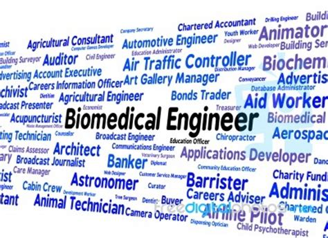 Biomedical Engineering Descriptions by Biomedical Engineer Means Career Mechanic And Words Stock Image Royalty Free Image Id 100358336