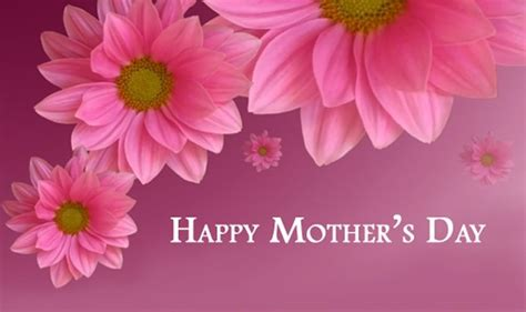 mothers day flowers flower wallpaper happy mothers day pictures