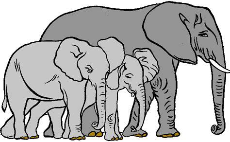 Elephants Images - Cliparts.co