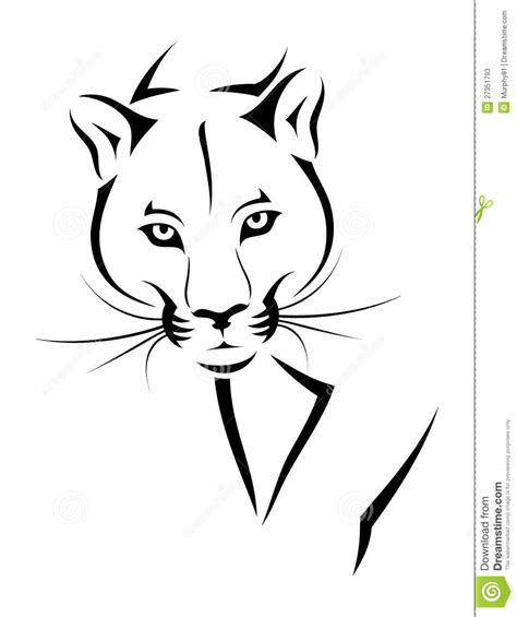 cougar tattoo stock vector image of isolated mammal