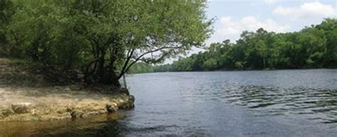 lafayette blue springs state park mayo top tips before
