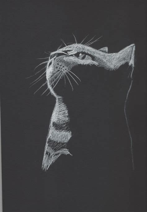 How To Make Charcoal Paper - white charcoal on black paper cat by pabogwiyeoun on