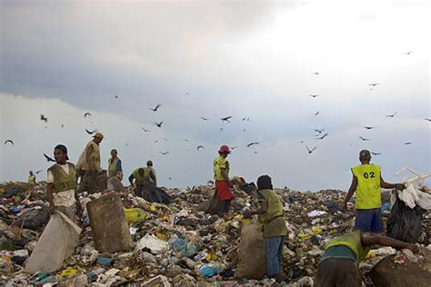 Waste Land by Greevents Waste Land Documentary Review