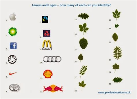 theme names are identified by their leaves logos identification quiz