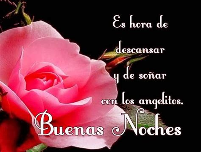 Imagenes Flores Buenas Noches | im 225 genes con frases de flores para dar las buenas noches