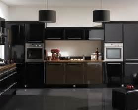 Kitchen Ideas With Black Cabinets by 22 Dark Kitchen Ideas Inspirationseek Com