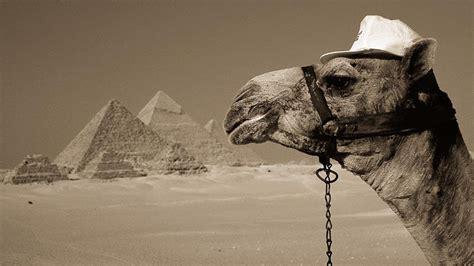 egypt wallpapers hd pixelstalknet