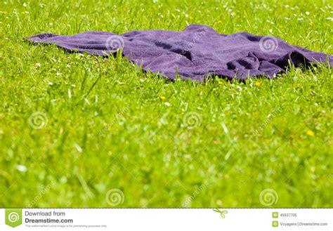 Picknick Violette Decke Auf Dem Grünen Gras Der Wiese
