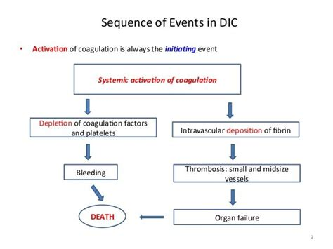 sepsis flowchart pathophysiology flowcharts a collection of ideas to try