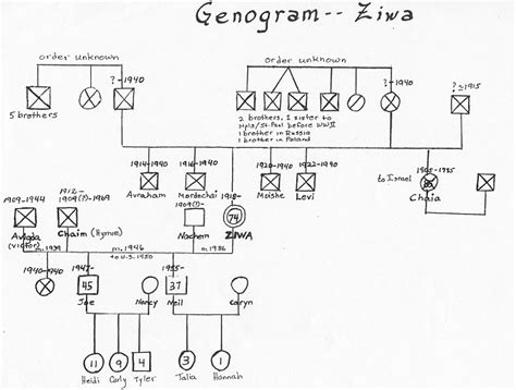 genogram template social work best photos of template for social work genogram exle