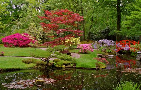 japanese garden japanese zen garden japanese garden the hague