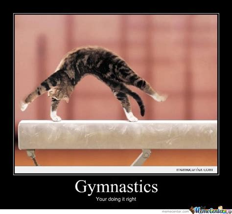 Gymnast Meme - gymnast cat by dawnblaze meme center