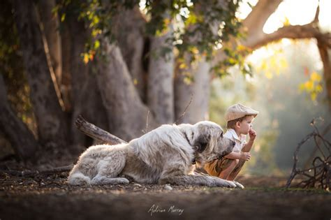 Giveaway Photo - pet portraits photo contest winners blog viewbug com