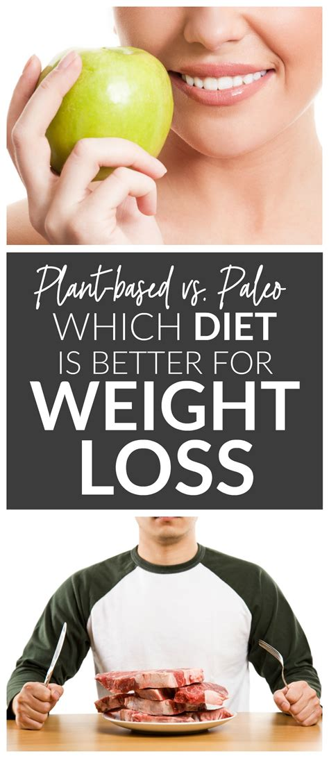 plant based diets   weight loss