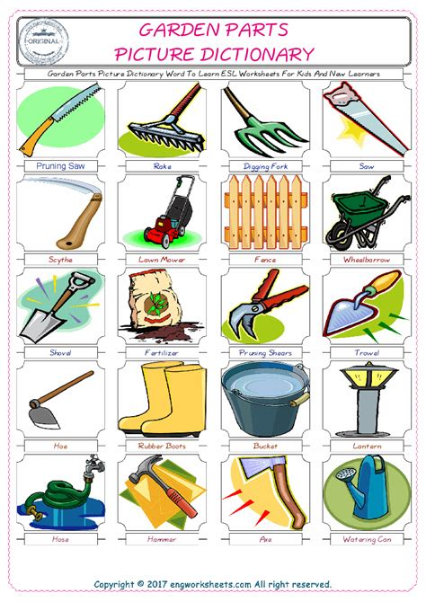 garden parts picture dictionary word  learn esl