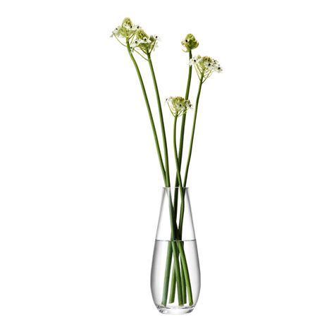 Stem Vases by Buy Lsa International Flower Stem Vase Amara