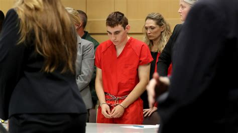 Dcf Records Dcf Records On Parkland Suspect Nikolas S Past Released Miami News Newslocker