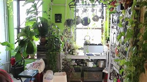 inside garden how to green your home part 1 build an indoor vertical