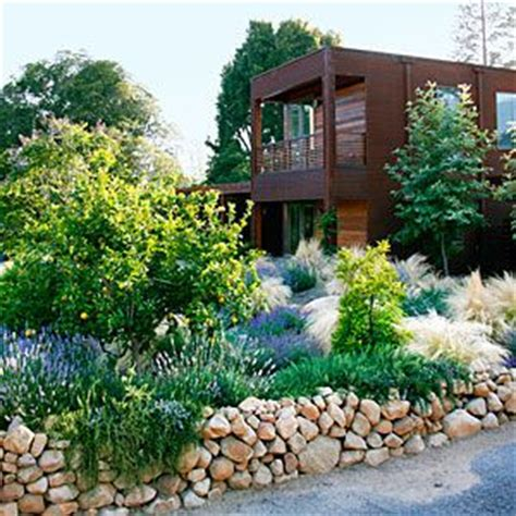 7 smart ideas for a low water yard