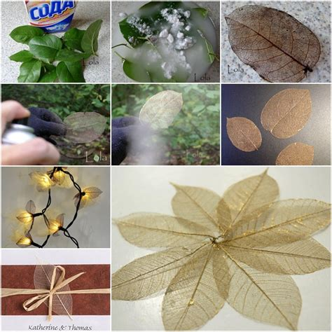 diy leaf decorations pictures photos and images for wonderful diy pretty skeleton leaf