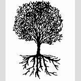 Family Tree Roots Background | 500 x 586 gif 11kB