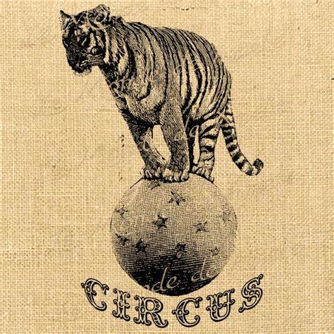 tiger 3 act a 0230475477 サーカス イラスト のおすすめ画像 46 件 サーカステーマ ヴィンテージのサーカス 馬