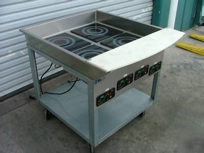 induction cooking table induction cook top warmer table sr 1151b 1w