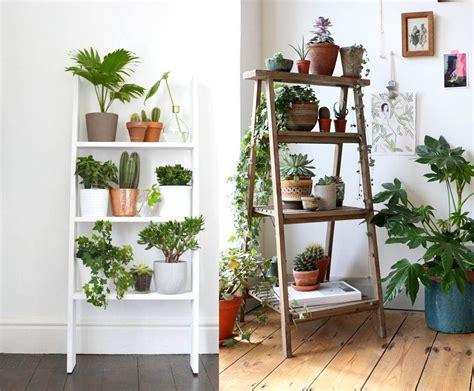 como decorar plantas con macetas como decorar cualquier habitacion con plantas de interior