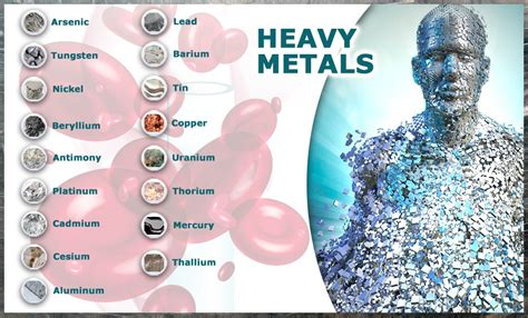 Detoxing The Brain From Heavy Metals safe effective methods to detox heavy metals paula owens