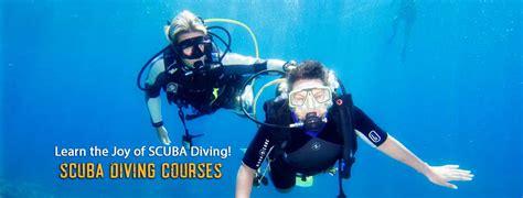 dive courses scuba dive courses diving learn to dive
