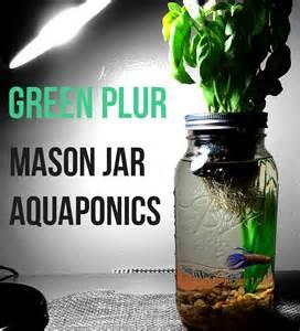 Indoor Hydroponic Gardening Kit - mason jar aquaponics organic kit start your new by greenplur