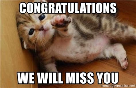 Miss You Meme - congratulations we will miss you fallen kitten meme