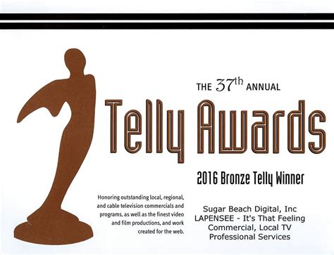 Lapensee Plumbing by Lapensee Plumbing Pools Air Commercial Wins Telly Award