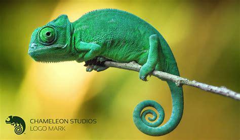 House Design Photo Gallery Sri Lanka by Chameleon Studios On Behance