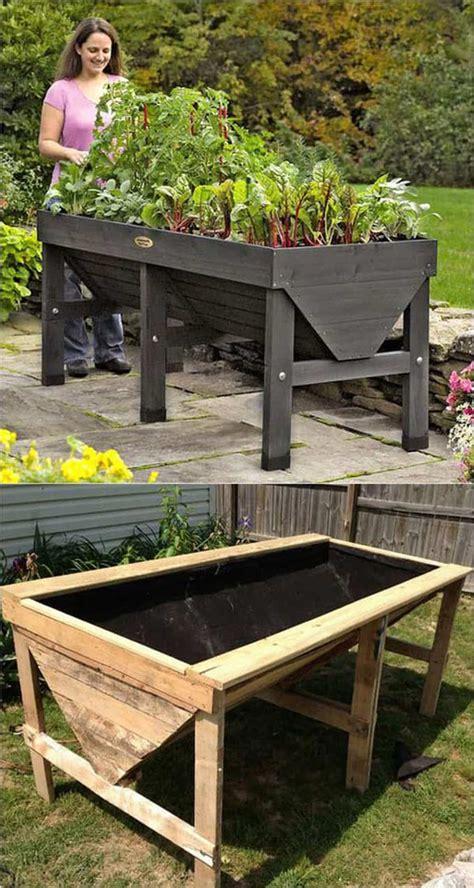 grow  plants  raised garden beds amazing diy