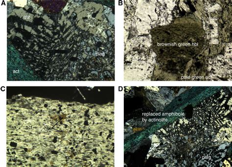actinolite in thin section proc iodp 309 312 site 1256