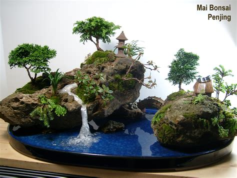 Indoor Fairy Garden Plants - bonsai amp penjing on pinterest bonsai bonsai trees and bonsai forest