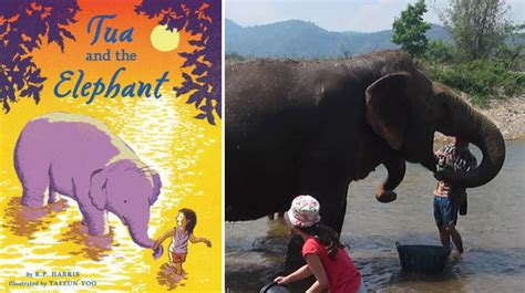 how to find an elephant books books that inspired us to go there see the world