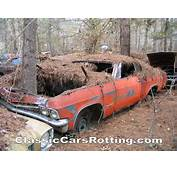 Junk Car Removal Get An Offer In Minutes Wallpaper Image