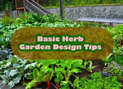 herb garden basics basic herb garden design tips gardening backyard