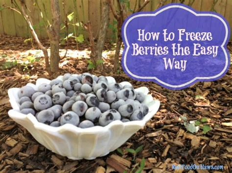 how to freeze berries the easy way real food outlaws