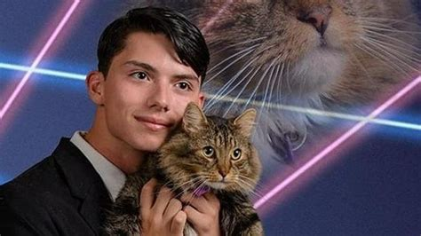 Laser Cat Meme - teenage laser cat meme creator passes away