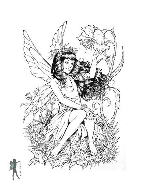 coloring books beautiful fairies 35 unique illustrations books enchanted designs mermaid free