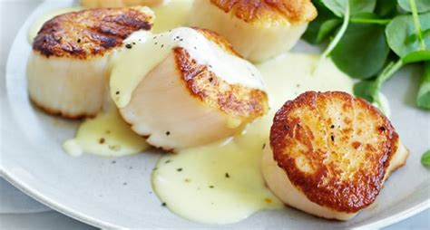 pan seared scallops with japanese spicy onion sauce 15 sumptuous seared scallop recipes food network canada