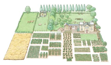 one acre spread how many homestead layout acre homestead layout and how much land do you need to be self sufficient thehomesteadingboards