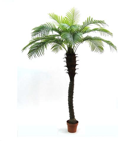 artificial outdoor palm tree at artificial landscapes