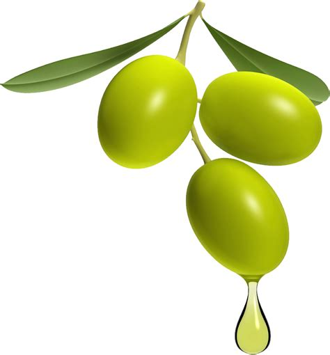 olives clipart olive clipart clipground