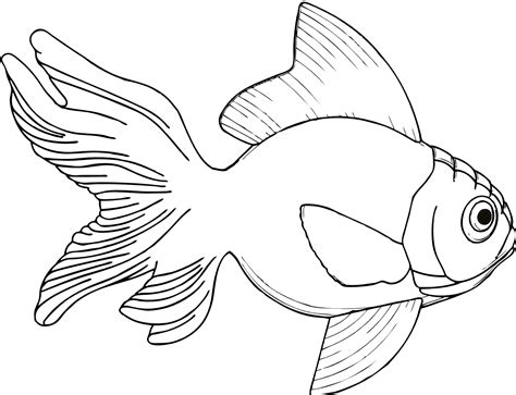 line drawing sketches fish line cliparts co