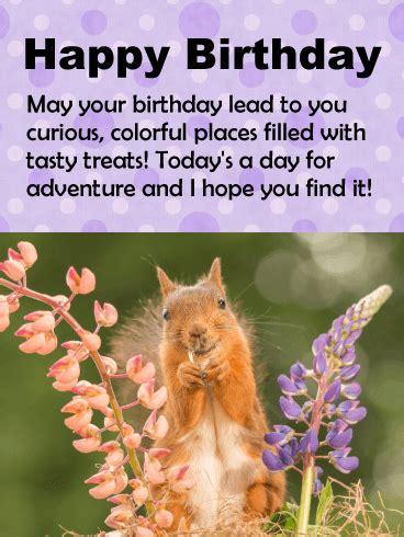 smiling squirrel birthday card birthday greeting cards