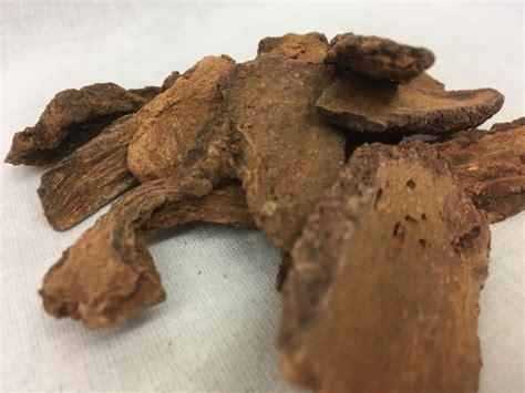 Suo Yang Ekstrak Songaria Cynomorium Herb Herba Cynomorii Extract 锁阳 Herba Cynomorii